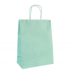 Mint green kraft paper carrier bags with twisted handles