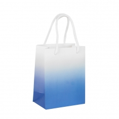 Matt paper carrier bag with coloured shading
